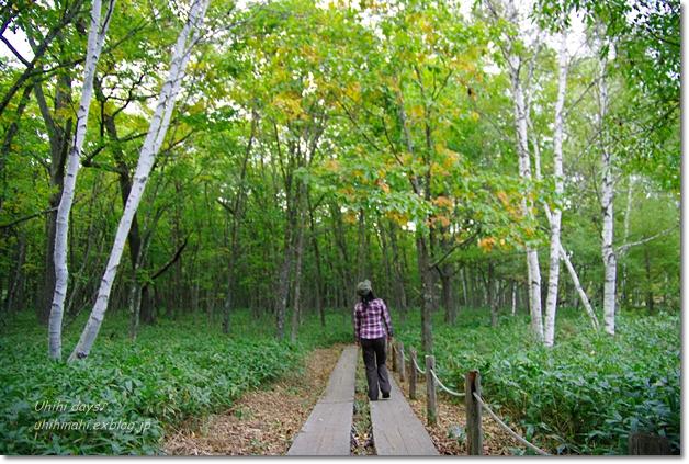 小さな秋を見つけに...日光 湯の湖・小田代ヶ原_f0179404_21403535.jpg