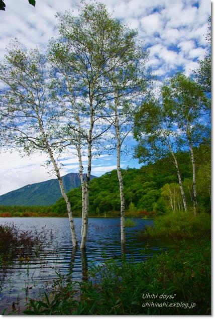 小さな秋を見つけに...日光 湯の湖・小田代ヶ原_f0179404_2140753.jpg