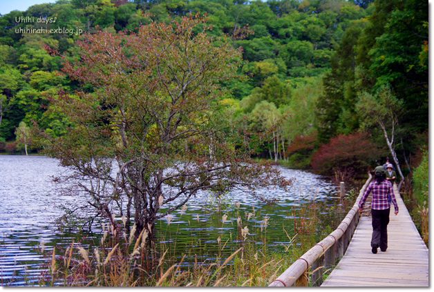小さな秋を見つけに...日光 湯の湖・小田代ヶ原_f0179404_21411911.jpg