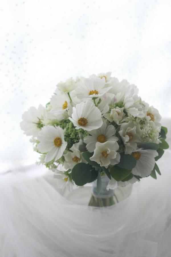白いコスモスのブーケ_a0042928_18433011.jpg
