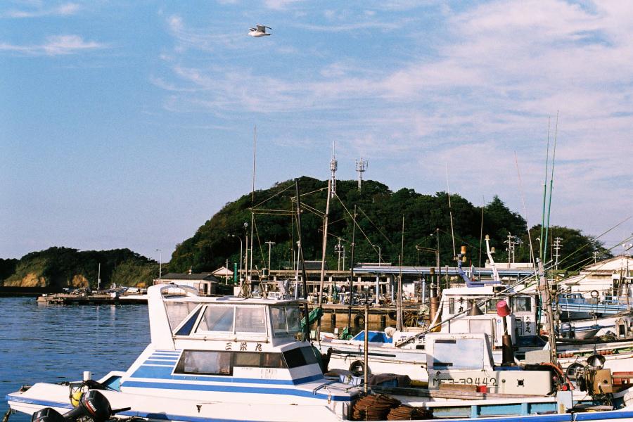答志島 III -漁港-_e0051186_21194079.jpg