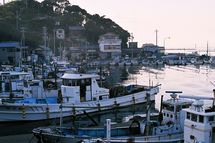 答志島 III -漁港-_e0051186_21201929.jpg