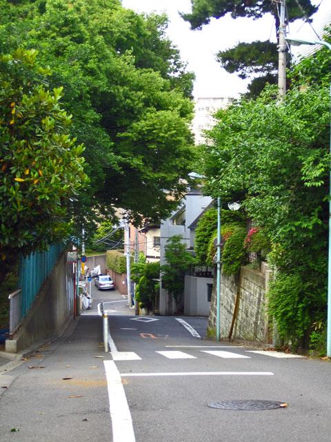 宇田川源流の湧水池_c0163001_0285838.jpg