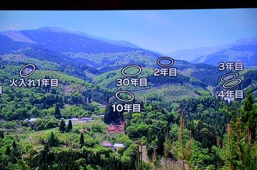 わが国最後の焼畑農業継承者_d0147406_7421314.jpg