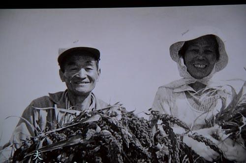 わが国最後の焼畑農業継承者_d0147406_7431322.jpg