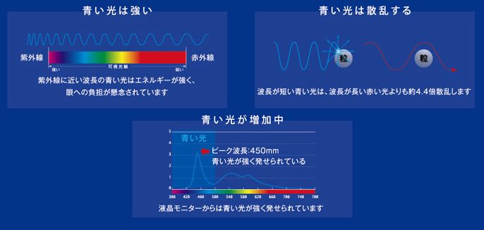 NIKON  SEE CLEAR  BLUE のご紹介です! by 甲府店・塩山店_f0076925_14105647.jpg