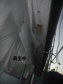 f0031037_222209.jpg
