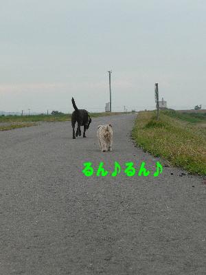 d0013645_14533391.jpg