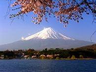 日本ノダメアカンターレブー列伝_f0053757_23512753.jpg
