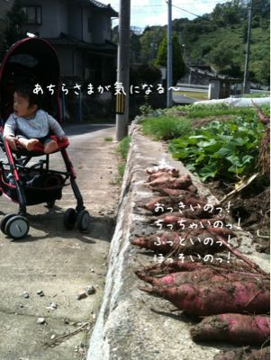 f0159270_2228858.jpg