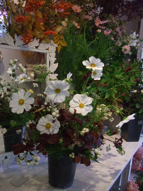 オークリーフ花の教室(秋のモノトーン)_f0049672_15425740.jpg