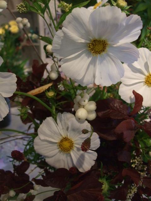 オークリーフ花の教室(秋のモノトーン)_f0049672_1553650.jpg