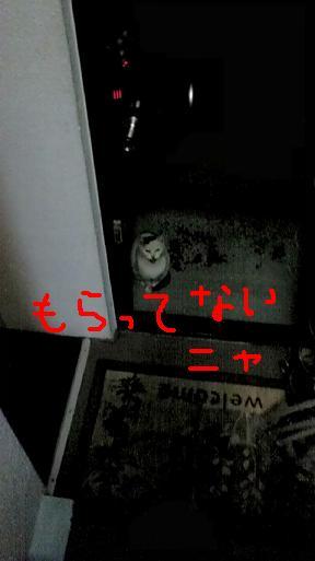 d0009175_19515560.jpg