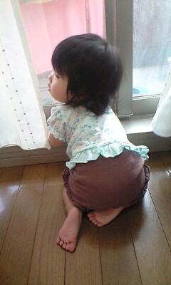 最近の姪っ子ちゃん_f0144003_9215298.jpg