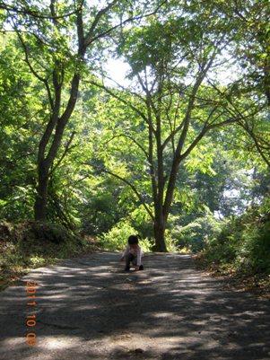 秋晴れのお散歩_b0197225_14475644.jpg
