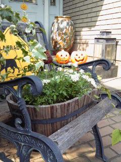 Garden!_a0229658_18479100.jpg