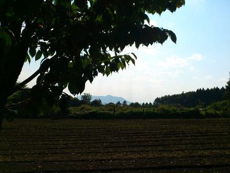 函館四稜郭公園_b0106766_19264762.jpg