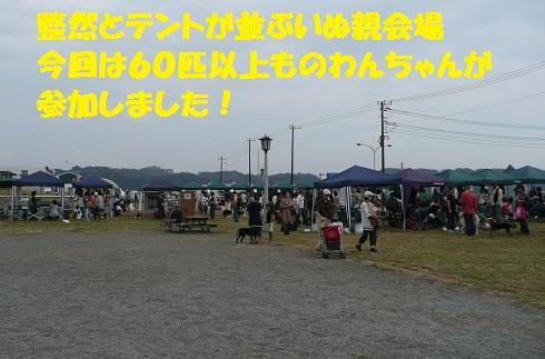 f0121712_6293330.jpg