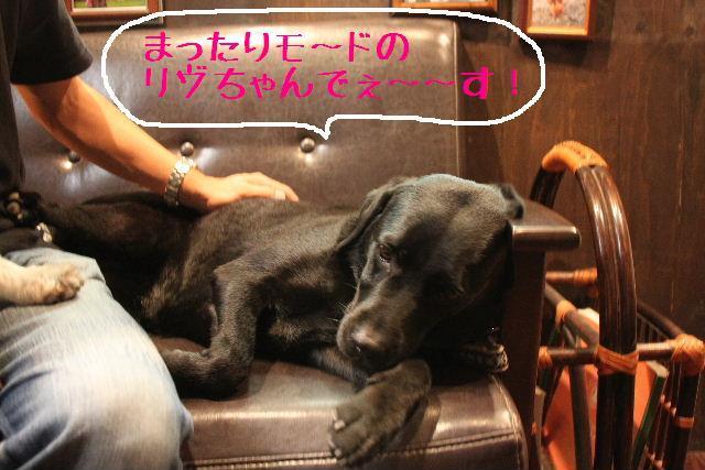 b0130018_10181338.jpg