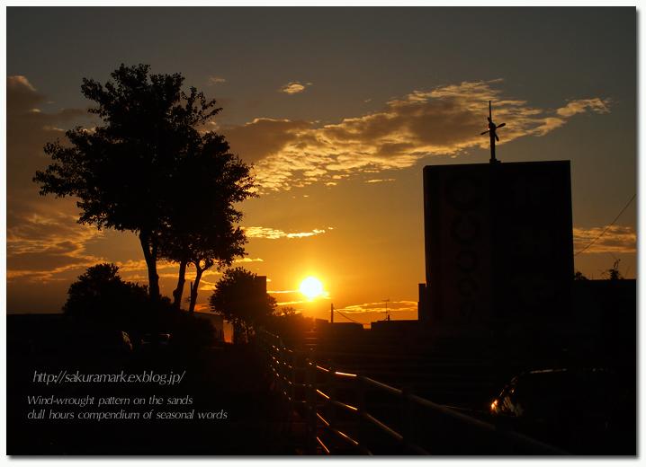 晩秋、夕日のあたる坂道。_f0235723_17562714.jpg