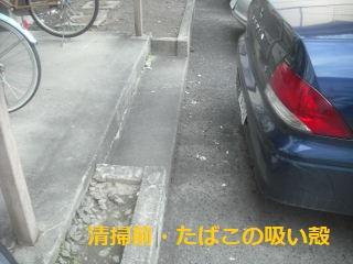f0031037_20512025.jpg