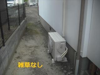 f0031037_20521435.jpg