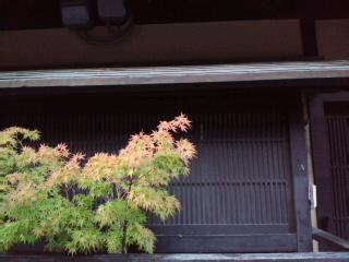 早速 祇園の町屋散策…京都の小さな秋みつけ〜_d0082356_7561749.jpg