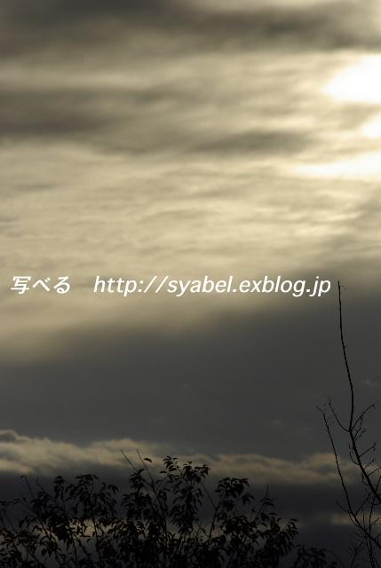 c0153764_193656.jpg