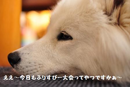f0212597_2142887.jpg
