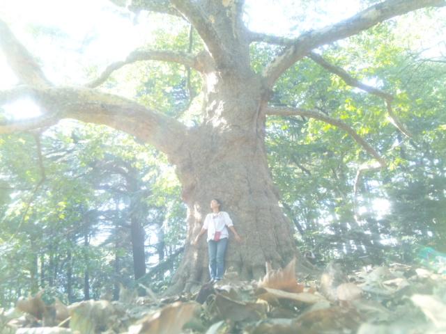土と木と、光と空気と私_a0201829_13193756.jpg
