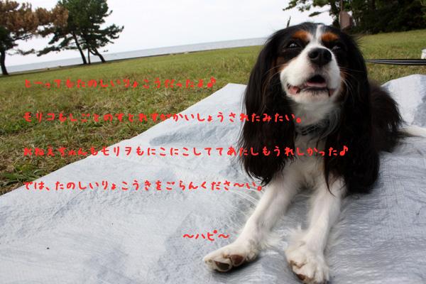 c0221462_2314858.jpg