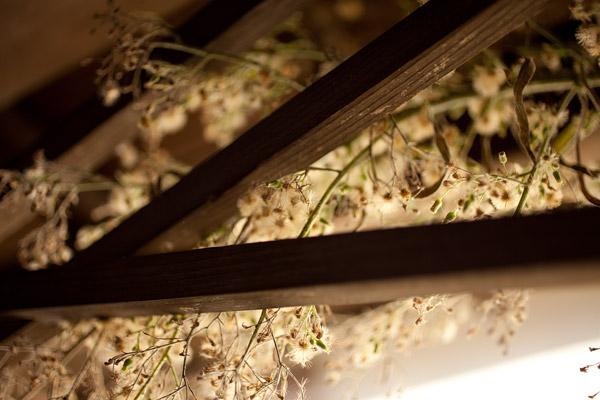 2011/10/11 青梅散歩(ゾロ目散歩):その1_b0171364_1023590.jpg