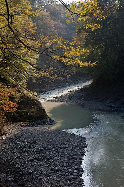 2011/10/11 奥多摩へ(ゾロ目散歩):その3_b0171364_1171283.jpg