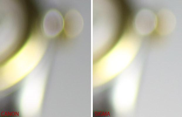2011/10/11 50mmマクロ対決 CANON vs SIGMA_b0171364_1240455.jpg