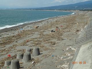 徹底的な津波対策を!_d0050503_8553288.jpg