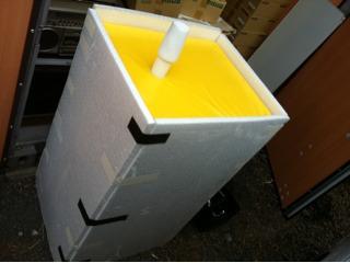 黄色いアイツ_a0077907_17431795.jpg