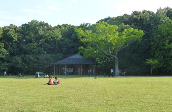 植物園 秋景色_e0048413_18554749.jpg