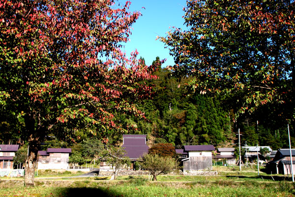 朽木の生杉 秋景色_e0048413_21273191.jpg
