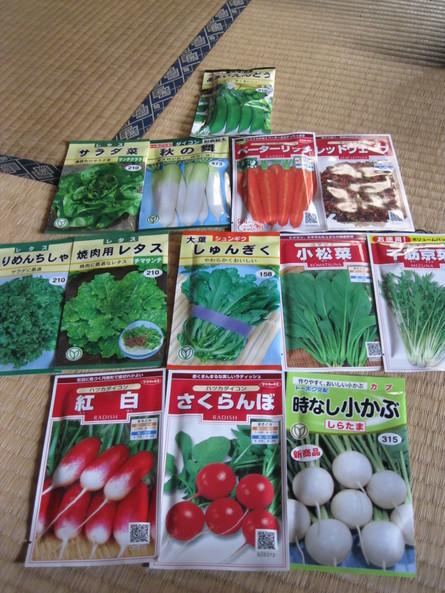 来年度の「畑」作り~☆_a0125419_2123710.jpg