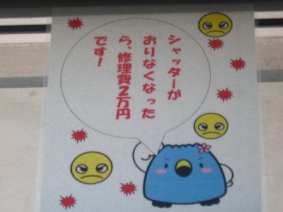 コスモス京ヶ瀬まつり2011_f0182936_2341077.jpg