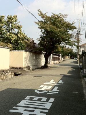 この通りは_c0185356_171391.jpg