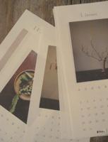 椿野恵里子さんのカレンダー入荷しました。_e0199564_1831080.jpg