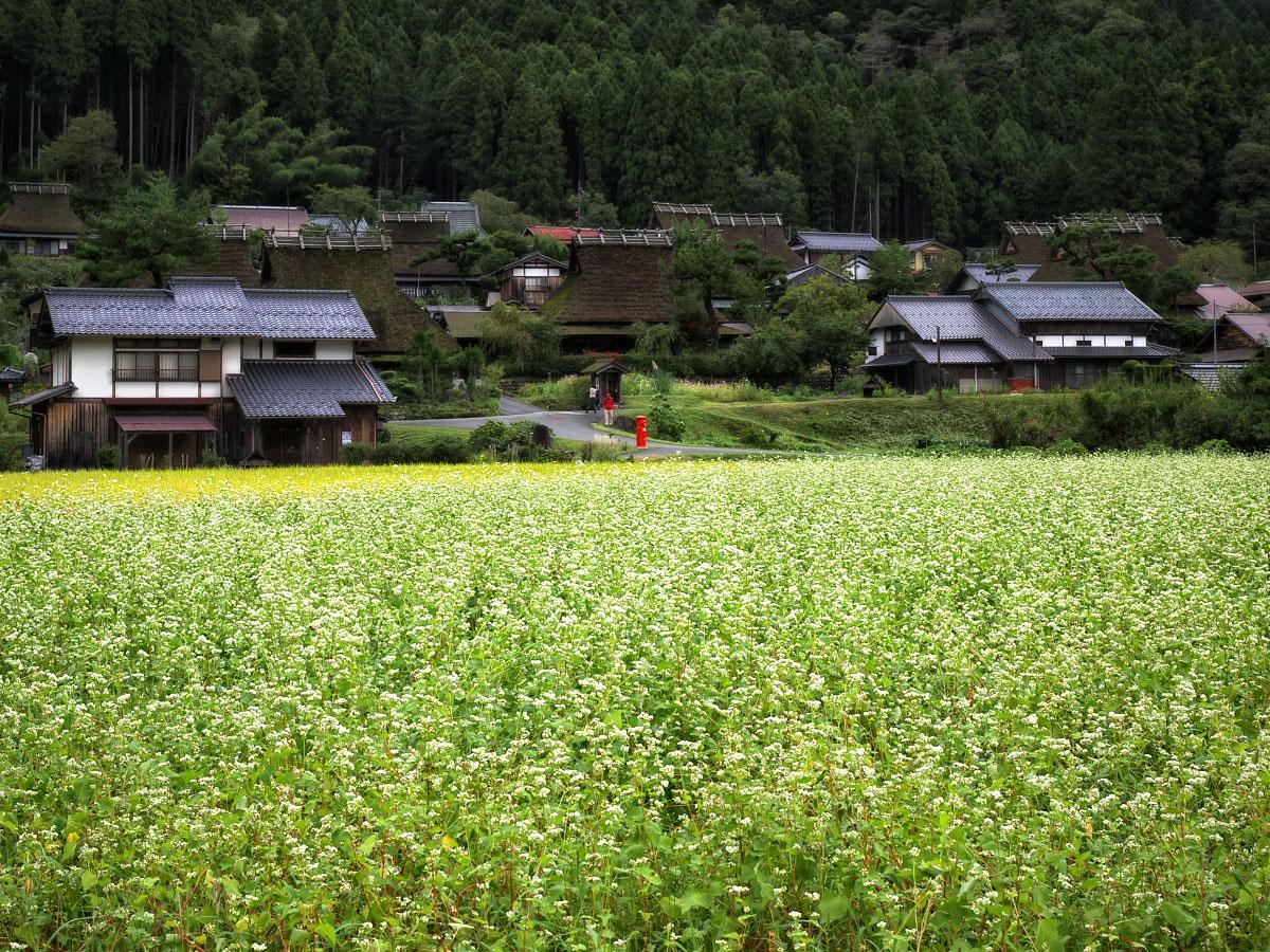 美山の里_f0021869_0165128.jpg