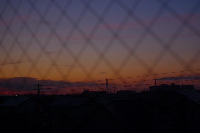 よいお天気 優空が退院 さっそく札幌へ_a0160581_7571224.jpg