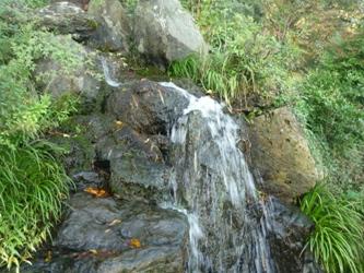 秋のドライブ。若宮の「清水寺」。_e0188087_22165634.jpg