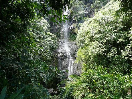 Hawaii 一人旅-Mauiの女神 その2 (追記あり)_f0186787_21475446.jpg