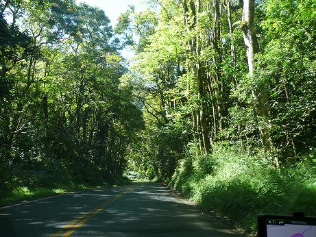 Hawaii 一人旅-Mauiの女神 その2 (追記あり)_f0186787_2182998.jpg