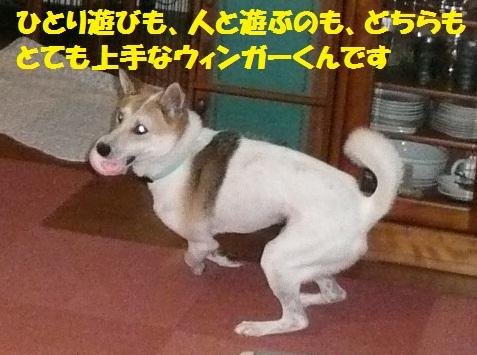 f0121712_14501529.jpg