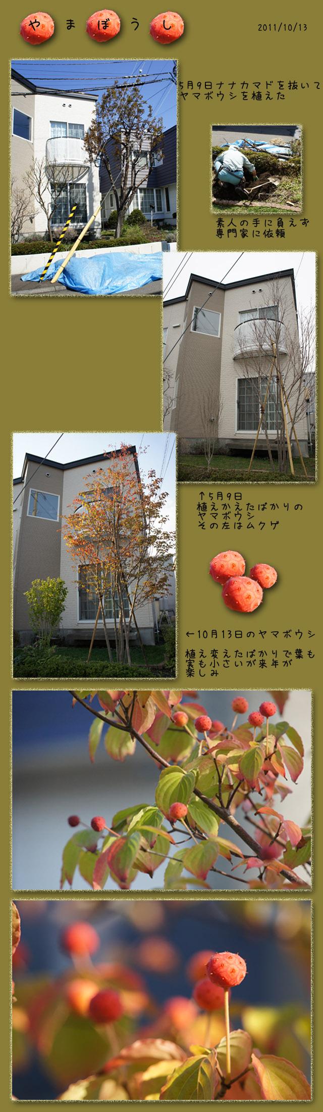 b0019313_17231233.jpg