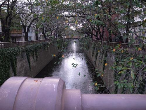 東京出張_a0113127_19561340.jpg